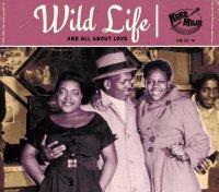 Koko-Mojo Original - Wild Life