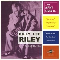 Billy Lee Riley - The Many Sides Of
