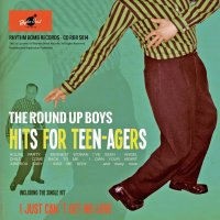 The Roundup Boys - Hits For Teenagers CD
